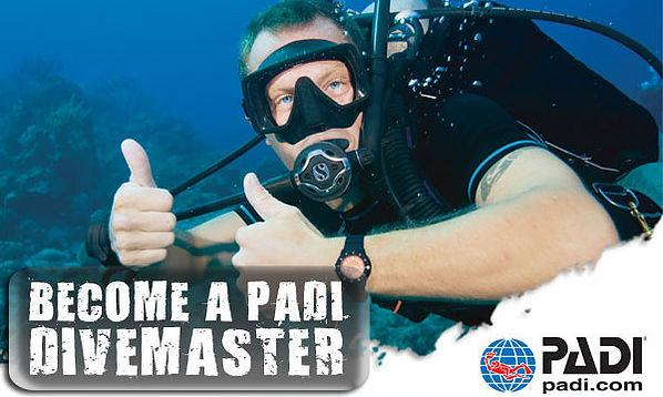 Divemaster Training Tuition Only