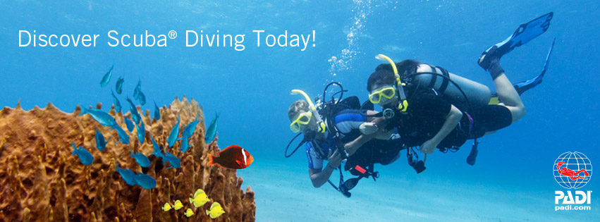 Open Water Scuba Class – Tuition Only