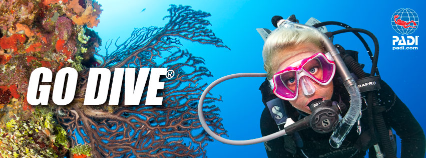 PADI PIC Certification Form